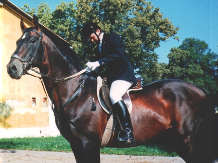 pferd-dolmetsch.at/ Lizenzprüfung Stadl Paura